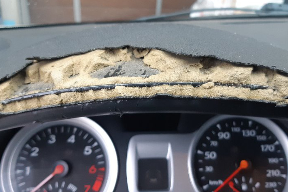 Photo gallery, repair of chewed dashboard from dog